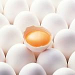 ویژگی های تخم مرغ سالم چیست؟