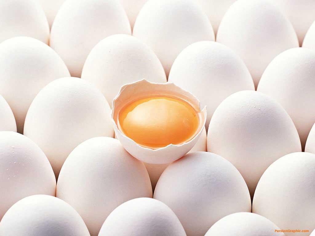 ویژگیها و خصوصیات تخم مرغ سالم