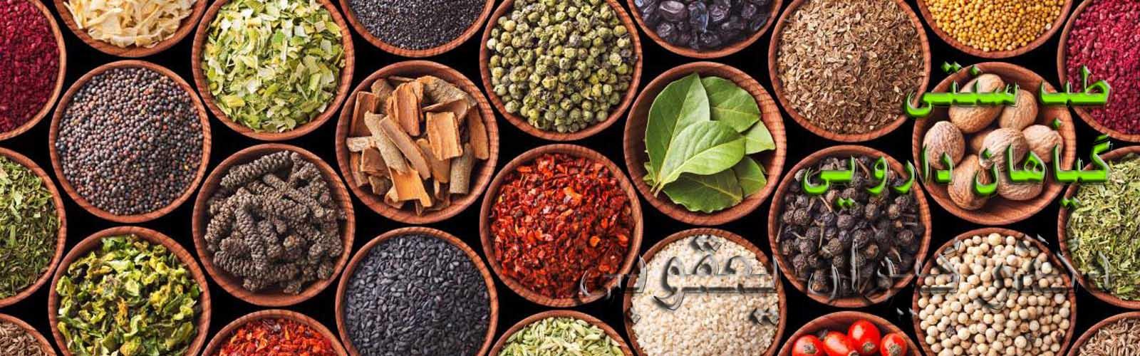 گیاهان دارویی طب سنتی زالو درمانی حجامت طب سوزنی دکتر یعقوبی